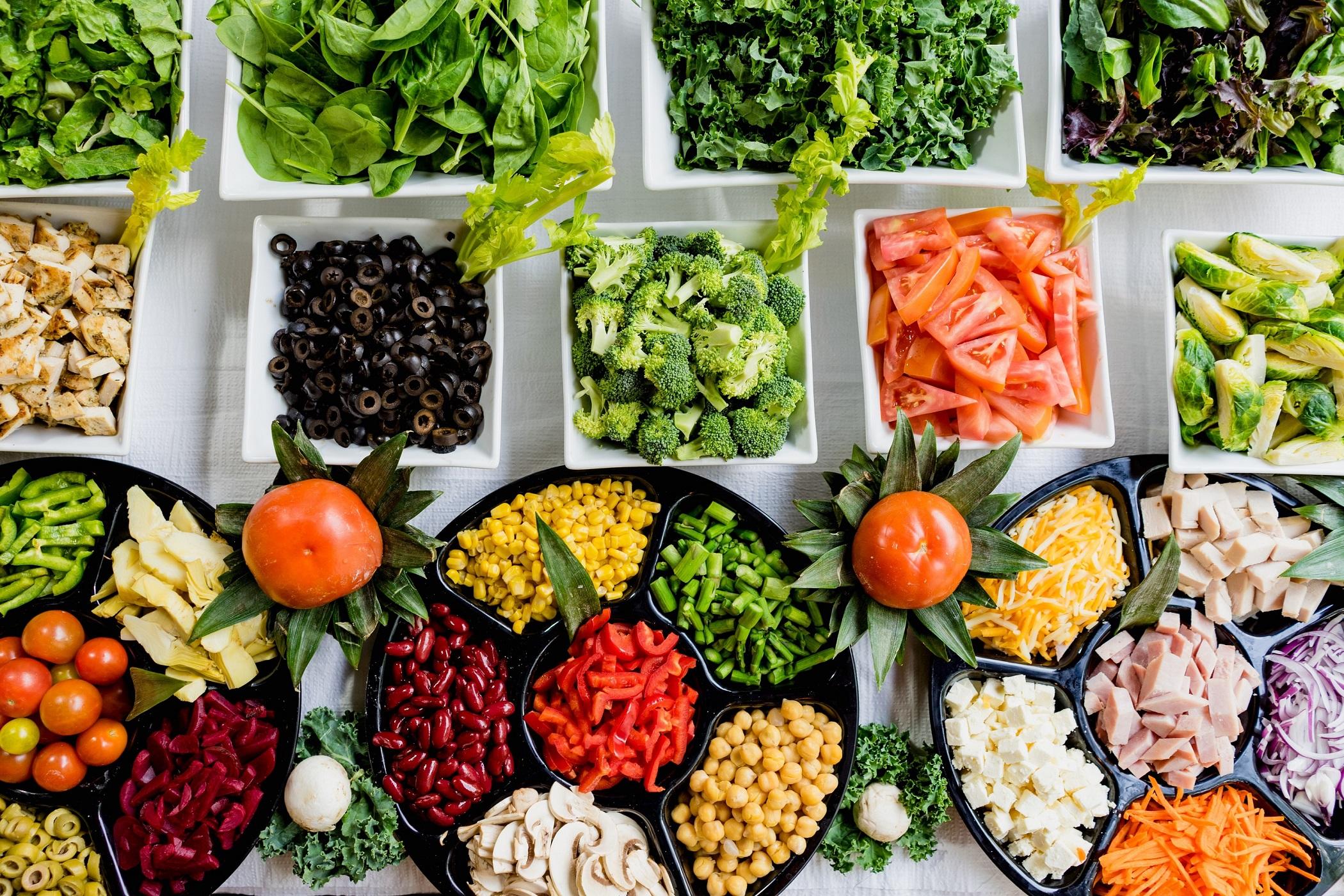 dynamic diet reviews